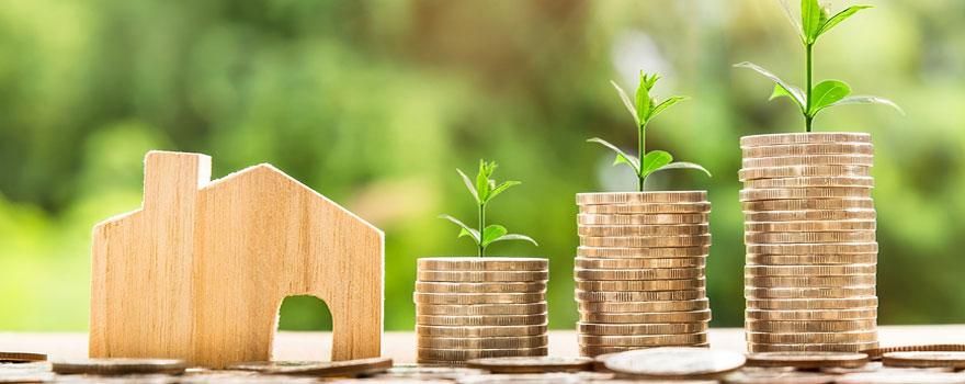 investissement-immobilier-loi-Pinel